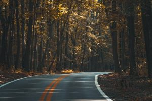 Scenic road without traffic to avoid confrontation when enacting your survival plan