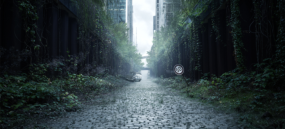 City with vegetation for testing urban survival skills